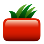 Square Tomato Creative Agency logo